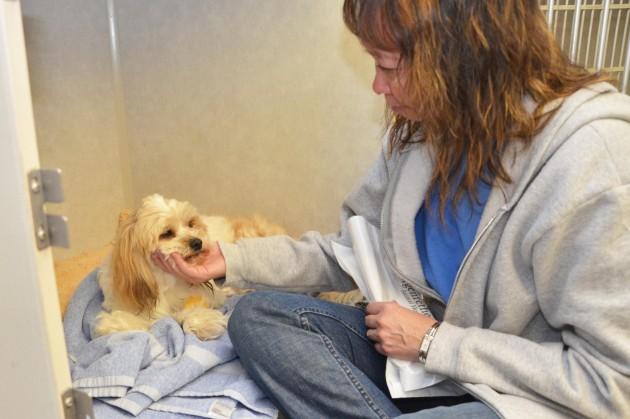 Sharleen says goodbye to Lucky